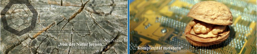 Headbild - Von der Natur lernen - Komplexitaet meistern